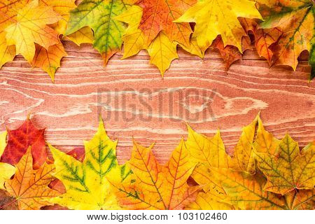 Autumn Leaves Background (frame)