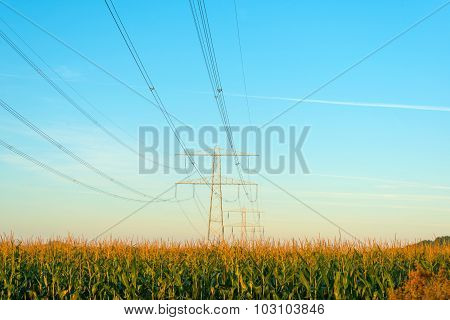 Power line in a blue hazy sky at sunrise