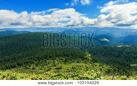 summer landscape of the Montenegrin ridge
