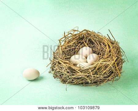 Twigs Nest With White Egg On Grunge Backgroung
