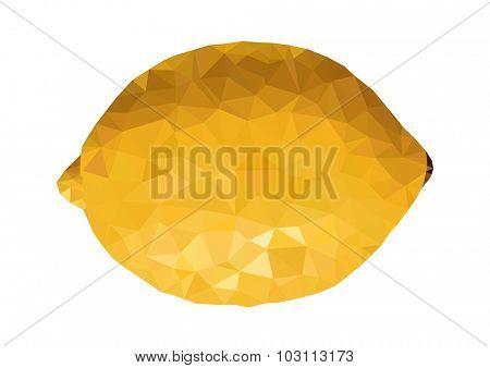 triangle fresh lemon and lemon slice