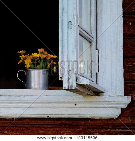Yellow marigold in the white wooden window