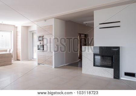 Commodious Lounge With Fireplace