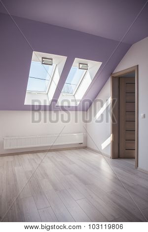 Spacious Attic With Floor Panels