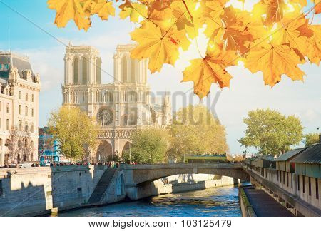 Notre Dame cathedral church, Paris, France