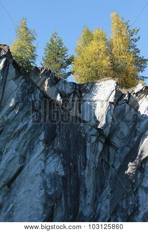 Forest on a marble cliff
