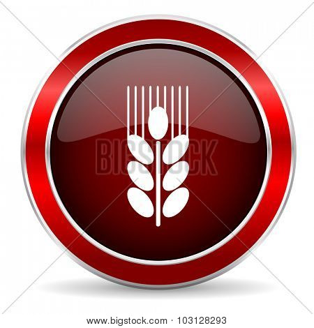 grain red circle glossy web icon, round button with metallic border