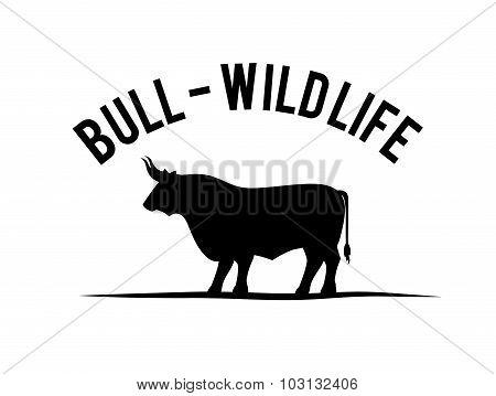 Bull design