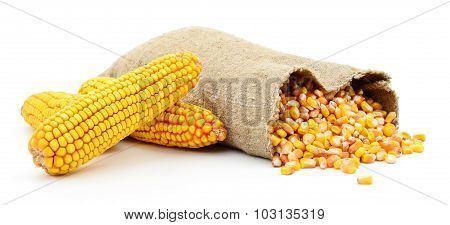 Bag Of Corn Kernels.