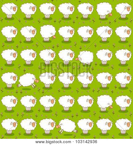 Rows of White Sheep Grazing On a Green Meadow