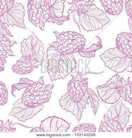 Vector drawing pattern of raspberries