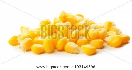 Grains of ripe corn isolated on white