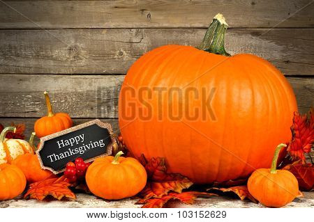 Autumn pumpkins with Happy Thanksgiving chalkboard tag
