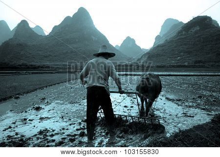 Plough Rice Paddy Guangxi China Tranquil Remote Concept