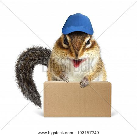 Funny Squirrel Courier With Box And Baseball Cap