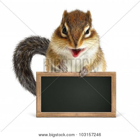 Funny Squirrel Hold Blank Blackboard, Isolated On White