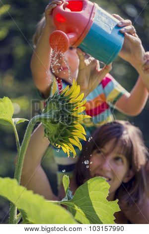 Retro Image Of Young Mother Holding Her Toddler On Shoulders As He Waters A Beautiful Blooming Sunfl