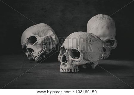 Still Life Photography With Human Skulls On Wood Table