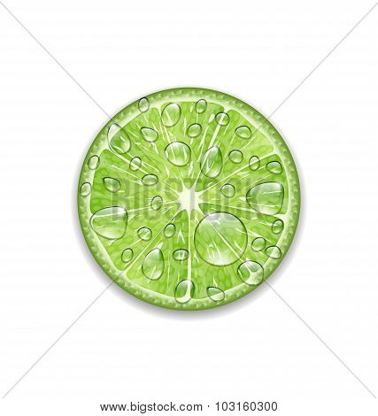Lime with Transparent Droplets