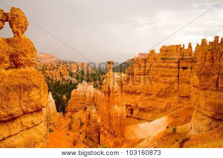 Summer Rain Storm In Bryce Canyon National Park