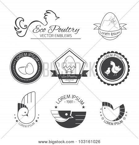 Set of poultry logos