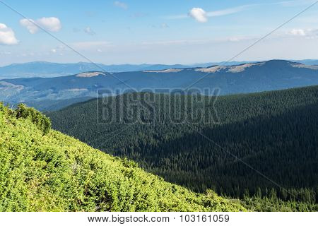 Landscape Carpathian Mountains