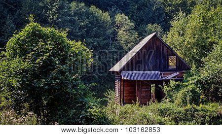 Abandoned Wooden Cabin