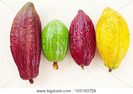 Different Sorts Of Colorful Cocoa Pods On White