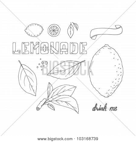 Set Of Hand Drawn Elements For Lemonade Or Soda Package Design. Doodle Lemon, Leaves, Icons, Logo Te