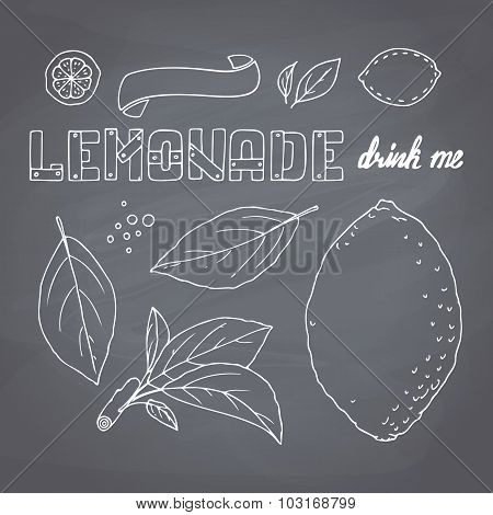 Set Of Hand Drawn Lemonade Ingredients On Chalkboard. Dodle Lemon, Leves, Icons, Logo Templates And