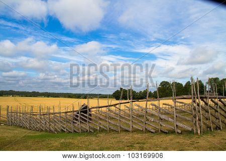 Whear field with the fence