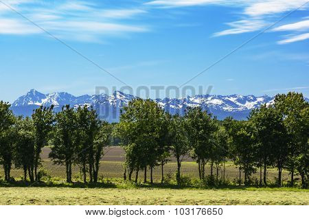 Pyrennees Mountains Seeing From A Field, France