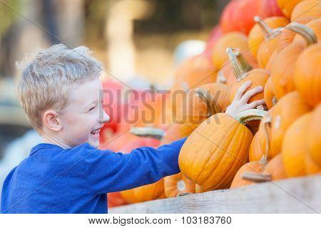 Kid At Pumpkin Patch