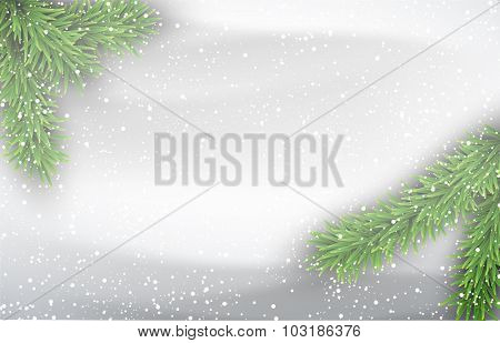 Winter background with fir branches. Vector Illustration.