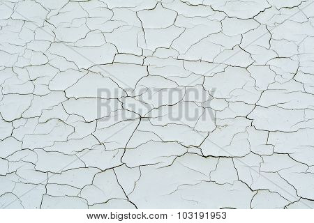 Cracked White Paint Texture