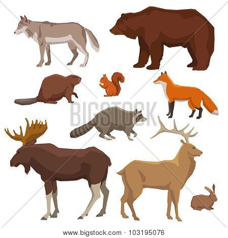 Wild Animal Painted Icon Set