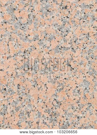 Variegated Cultivar Varieties Of Granite