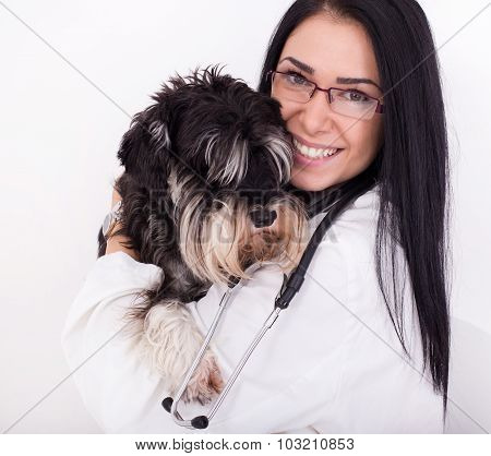 Woman Veterinarian With Miniature Schnauzer