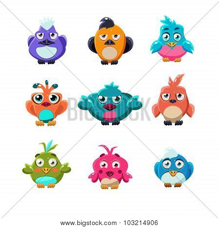 Colourful Cute Birds Vector Illustration Set