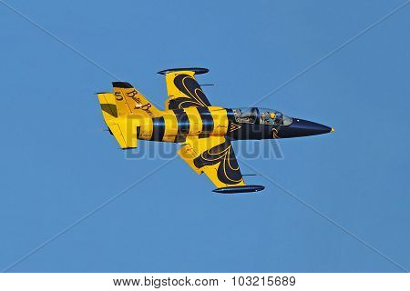 Baltic Bees Jet Team aircraft