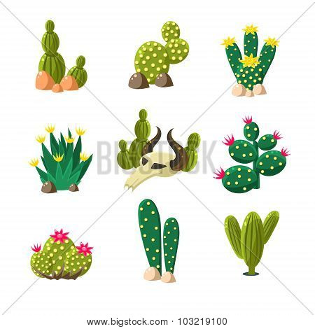 Cactus and Skull Icons, Vector Illustration Set