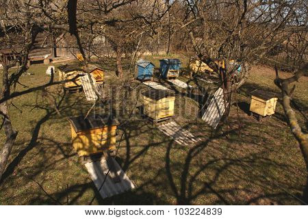 Yellow And Blue Bee Hives From The Top.