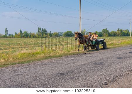 Two peasant using horse and cart as ecological transportation