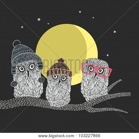 Three owl friends on the tree in the night forest. Birds with warm hats of scandinavian style.