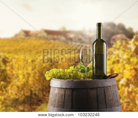 White wine bottle and glass on wooden keg. Vineyard on background