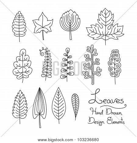 Vector set of leaves in cartoon style