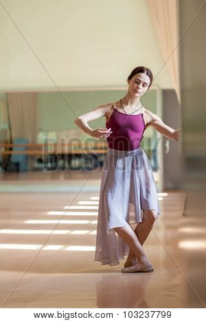 Classic Ballet Dancer Posing At Barre On Rehearsal Room Background