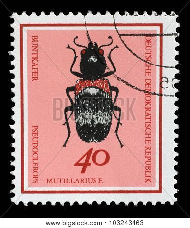GERMAN DEMOCRATIC REPUBLIC - CIRCA 1968: A stamp printed in Germany from the Useful Beetles issue shows Clerus mutillarius, circa 1968.