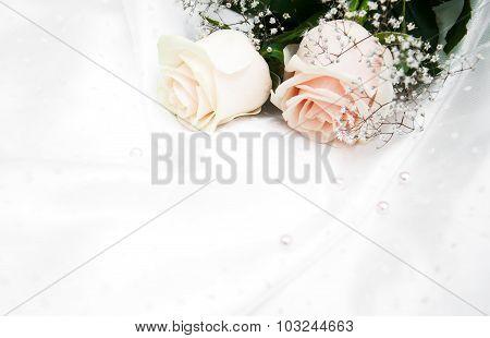 Roses On White Silk Background