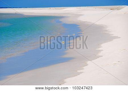 Sokotra Beach, Yemen